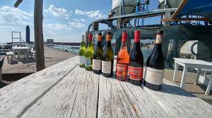 Lamberts Bay Wine and Beer Tour